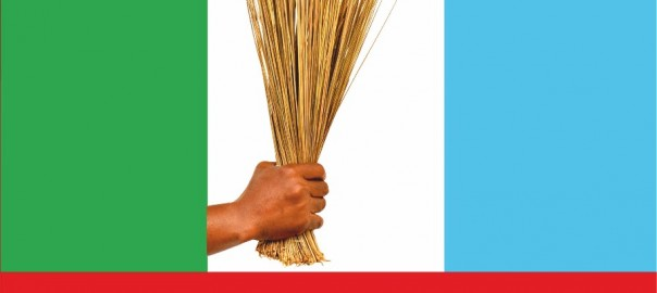 Rivers APC Calls For Fresh Elections