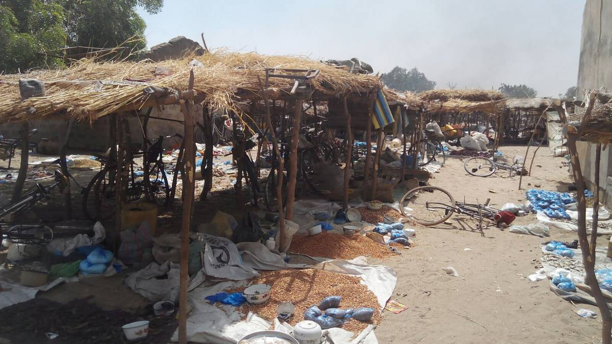 Nigerian Troops Rescue 195 People, Destroy More Boko Haram Camps In Borno State