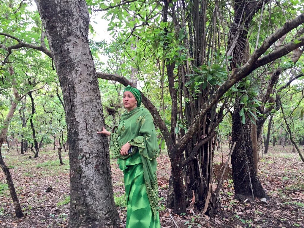 Minister, NCF Preach Sustainable Development On Forests