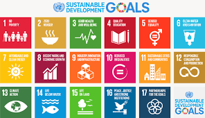 Minister Assures Of Nigeria's Commitment To SDGs
