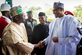 APC Wouldn't Have Won Without Tinubu – President Buhari