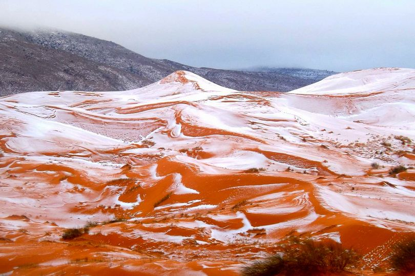 Snow Falls in Sahara Desert After 37 years –Reports