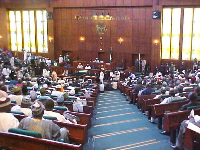Reps to Investigate Lack of Funds for Amnesty
