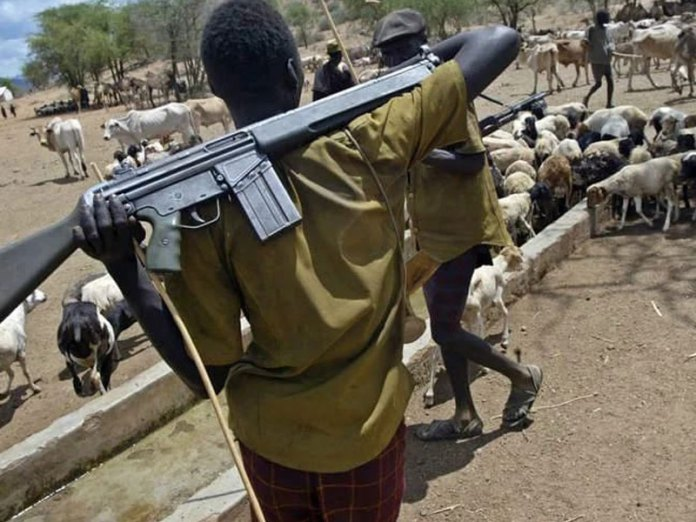 Herdsmen Attack Pregnant Woman In Ekiti