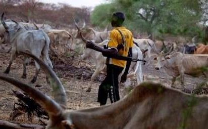 Killer Herdsmen Not Terrorists, Says Garba Shehu