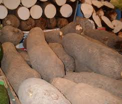 Nigeria To Export Yam To Europe At The End Of June