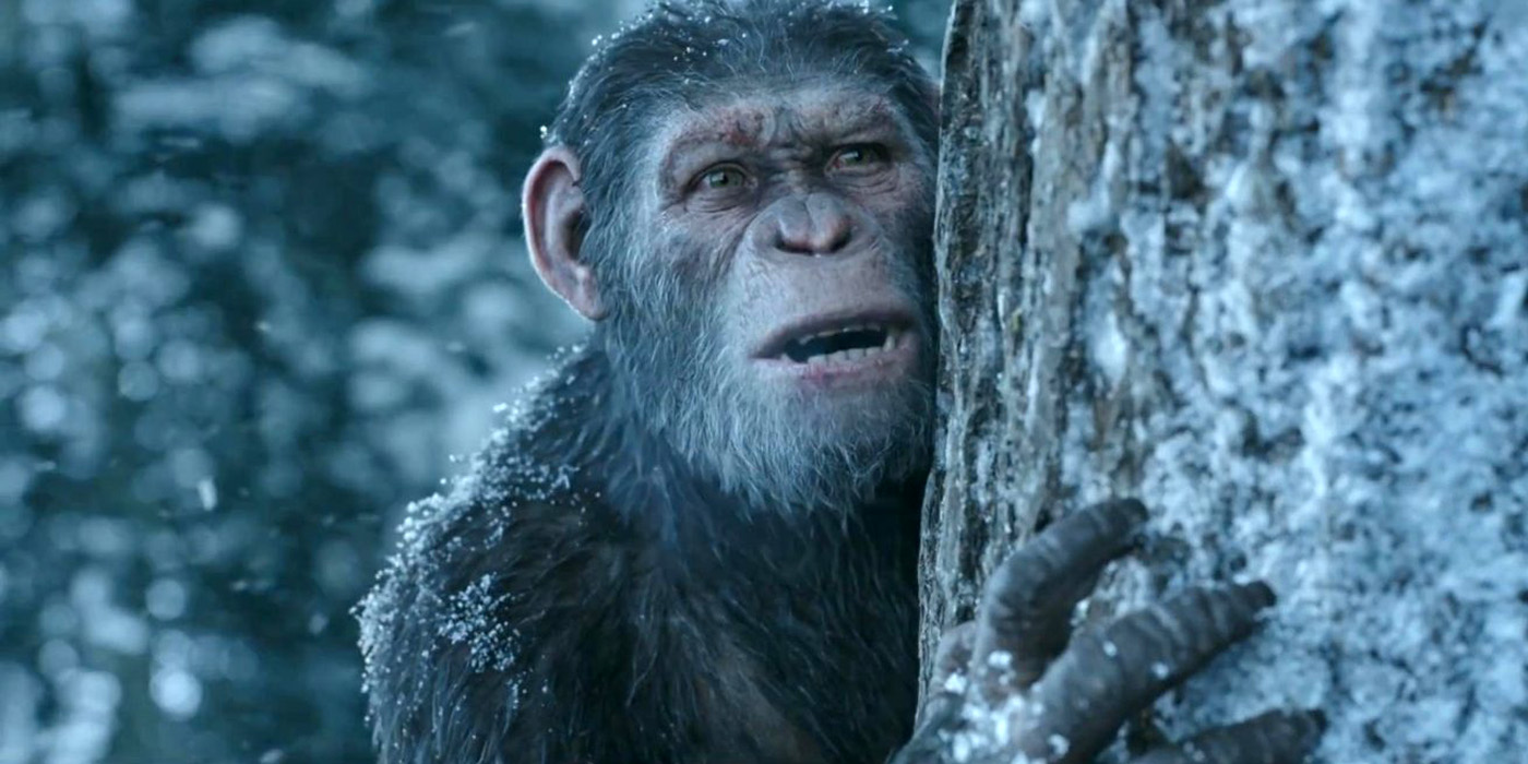 'War For The Planet Of The Apes' Swings To Top Of US Box Office