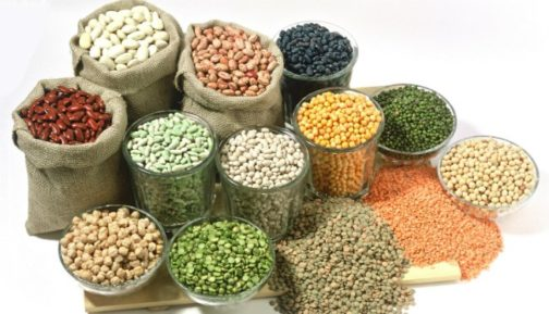 Kano State Inaugurates Seed Inspectors