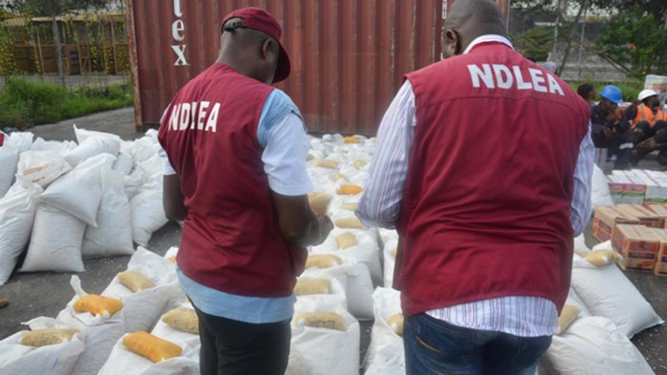 Over 617 Suspects Arrested By NDLEA, 3.5 Tones Of Assorted Narcotics Recovered