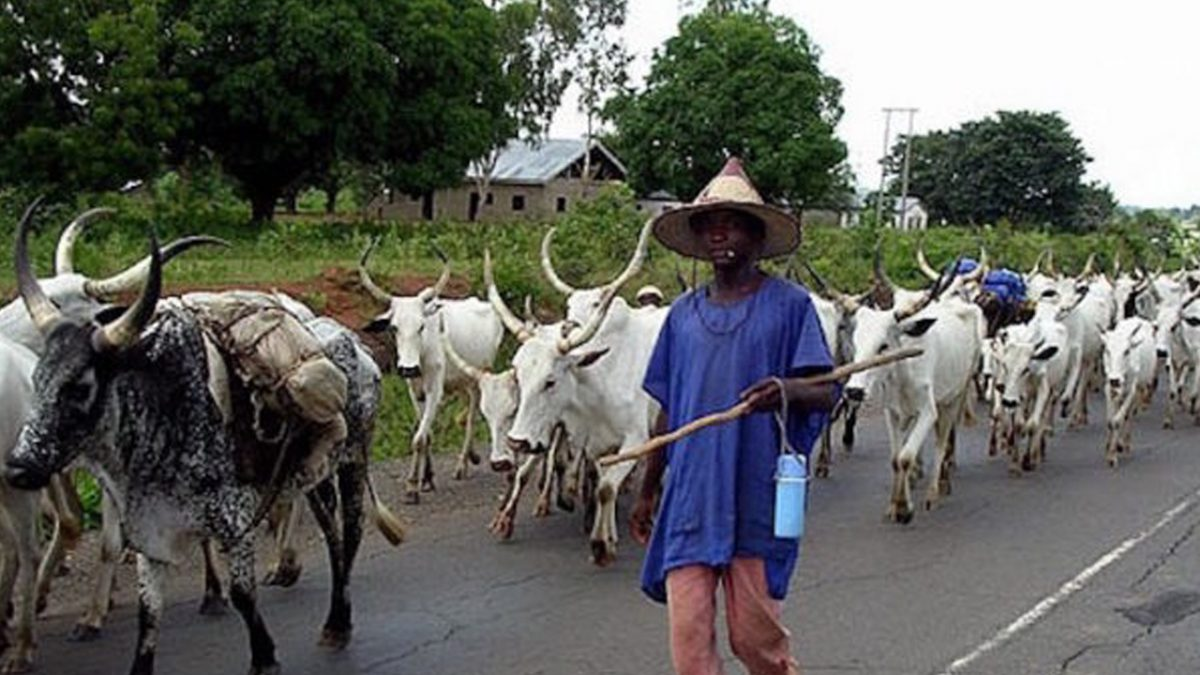 Herdsmen: Ministries Of Agriculture Expresses Fear Over Food Shortage