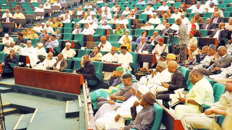 SDP Gets First National Assembly Member