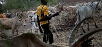 Man Recounts Ordeal with Herdsmen